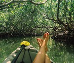 Kayak & Eco Tours