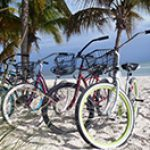 Moped & Bike Rentals