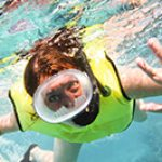Key West Diving & Snorkeling